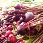photo of beets in a bunch