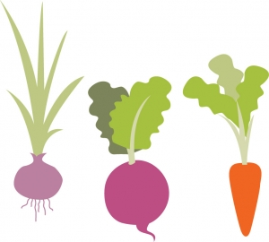 2Root Stewardship Campaign Vegetable Illustration